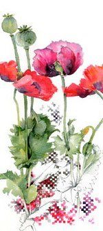 A collection of red whimsical poppies