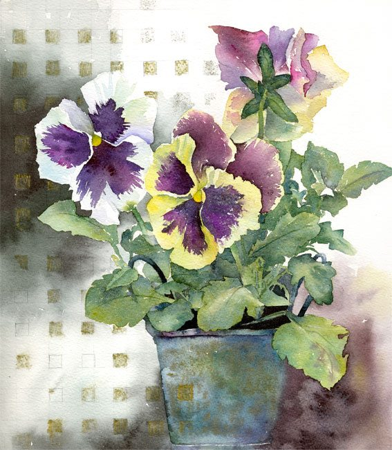 Pansies-and-Checks