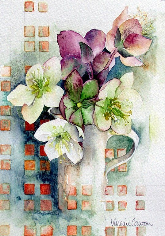HELLEBORES & CHECKS