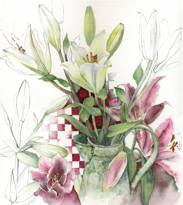 Emerging pink and white lilies