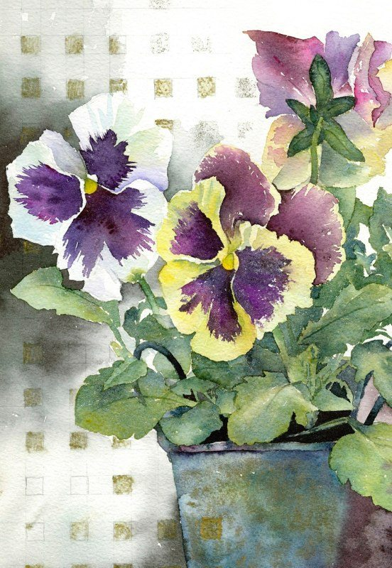 Yello and white pansies