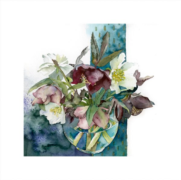 Heavenly-Hellebores