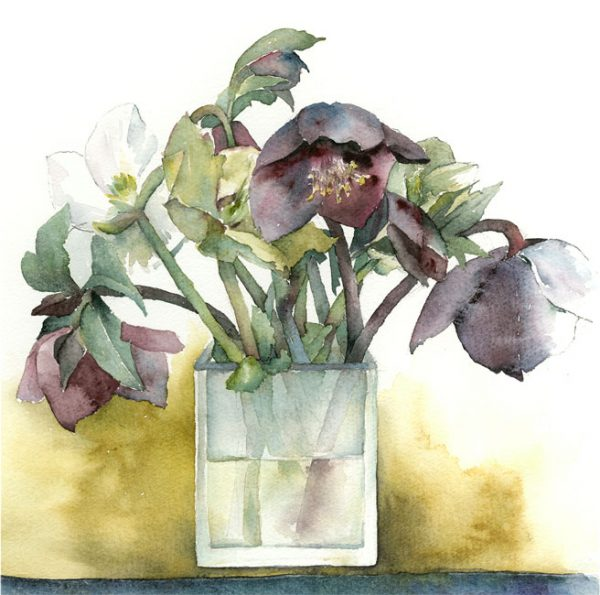 Helebores-in-Frosted-Glass