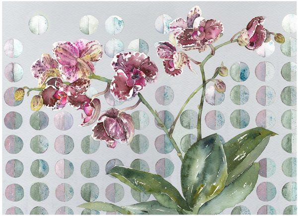 Margo's-Orchid-V2-WEB copy