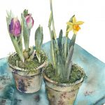 Potted-Spring