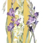 Three-Gladioli(web)