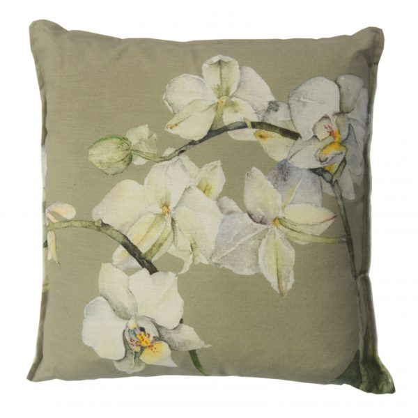 Moth Orchid cushion ok