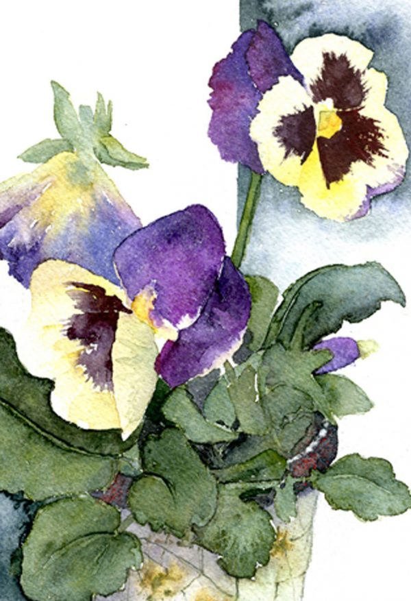 pansies in crackle