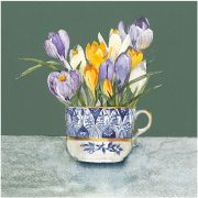 Crocus-in-Coalport-WEB copy